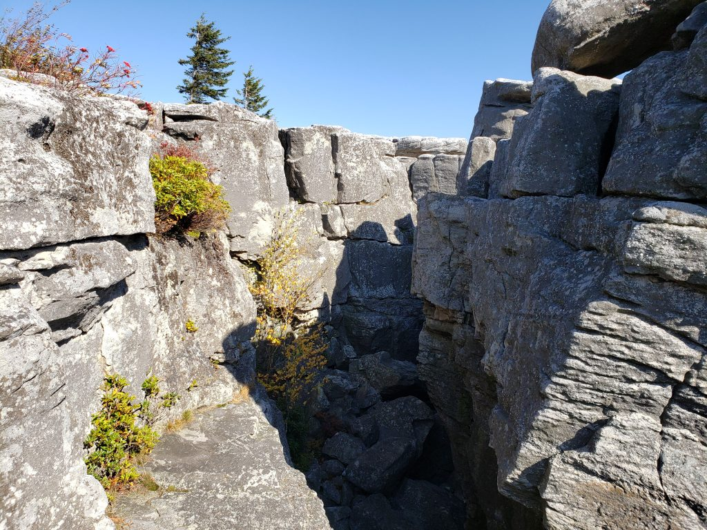 Rock Crevice, Bear Rocks, Dolly Sods, WV - crazyJCgirl.com